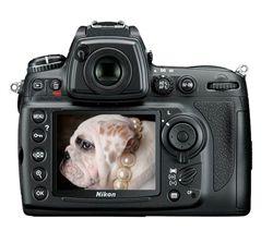 دوربين عكاسی ديجيتال نيكون-Nikon D700