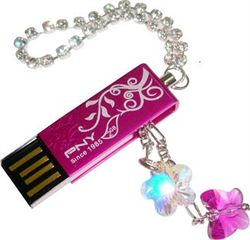 حافظه فلش / Flash Memory  -PNY Lovely  Flower 2GB