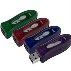 حافظه فلش / Flash Memory كينگستون-Kingston DT 110 1GB