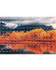 - استیکر لپ تاپ مدل SKINS-47برای لپ تاپ 15.6 اینچ-طرح جنگل پاییزی